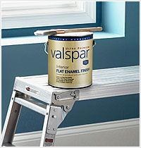 Paint Storage, Clean-Up and Disposal
