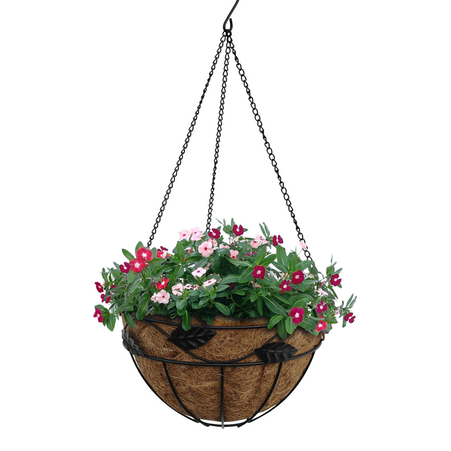 Hanging Flower Baskets At Lowes : Soteria