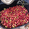Sky Mountain Coffee Brazil Cerrado 12-oz Whole Bean Coffee