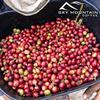 Sky Mountain Coffee Sumatra Mandheling 12-oz Whole Bean Coffee