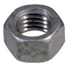 The Hillman Group 20-Count 1/2-in-13 Stainless Steel Standard (SAE) Hex Nuts