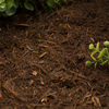 Evergreen 2-cu ft Light Brown and Gold Hardwood Bark Mulch