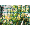 Blue Hawk 48-in x 50-ft Green Plastic/Polyresin Perimeter Fence