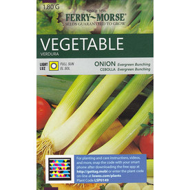 Ferry-Morse Onion Evergreen Bunching Vegetable Seed Packet