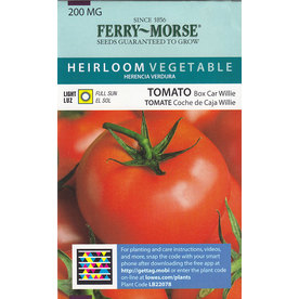 Ferry-Morse Tomato Box Car Willie Seed Packet