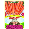 Ferry-Morse Carrot Vegetable Seed Packet