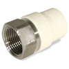 KBI 3/4-in Dia Adapter CPVC Fitting