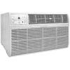 Frigidaire 10,000-BTU 450-sq ft 115-Volt Wall Air Conditioner ENERGY STAR