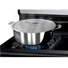 Frigidaire Freestanding 4.2-cu ft Gas Range (Stainless Steel) (Common: 30-in; Actual: 29.88-in)