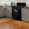 Frigidaire Freestanding 4.8-cu ft Electric Range (Black) (Common: 30-in; Actual: 29.88-in)