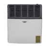 Ashley Hearth Products 8,000-BTU Wall-Mount Natural Gas Vented Convection Heater