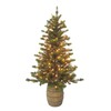 Holiday Living 5-ft Indoor/Outdoor Pine Pre-lit Decorative Artificial Tree with 140 Clear Incandescent Lights