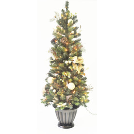 allen + roth 5-ft Pre-Lit Pine Artificial Christmas Tree with White Lights