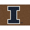 Milliken 2-ft 8-in x 3-ft 10-in Rectangular NCAA Illinois Fighting Illini Accent Rug