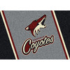 Milliken 2-ft 8-in x 3-ft 10-in Rectangular NHL Phoenix Coyotes Accent Rug