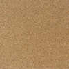 Milliken 19-5/8-in x 19-5/8-in Antico Textured Carpet Tile