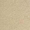 Milliken 12-Pack 19.7-in x 19.7-in Birch Bark Indoor Textured Adhesive-Backed Carpet Tile