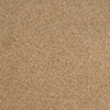 Legato 19-5/8-in x 19-5/8-in Autumn Harvest Textured Carpet Tile