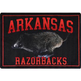 Joy Carpets 2-ft 8-in x 3-ft 10-in Rectangular NCAA Arkansas Razorbacks Accent Rug