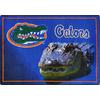 Joy Carpets 2-ft 8-in x 3-ft 10-in Rectangular NCAA Florida Gators Accent Rug