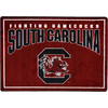 Joy Carpets 2-ft 8-in x 3-ft 10-in Rectangular NCAA South Carolina Gamecocks Accent Rug