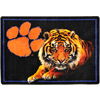 Joy Carpets 2-ft 8-in x 3-ft 10-in Rectangular NCAA Clemson Tigers Accent Rug