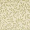 STAINMASTER Willow Nylon Fashion Forward Carpet Sample