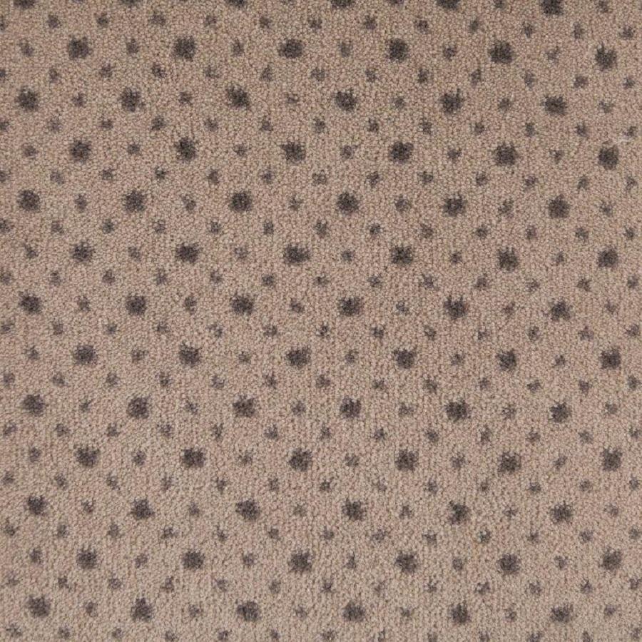 Shop STAINMASTER Taupe Nylon Fashion Forward Carpet Sample