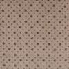 STAINMASTER Taupe Nylon Fashion Forward Carpet Sample