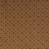 STAINMASTER Spice Nylon Fashion Forward Carpet Sample