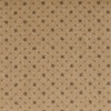 STAINMASTER Beige Nylon Fashion Forward Carpet Sample