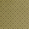 STAINMASTER Avocado Nylon Fashion Forward Carpet Sample