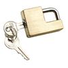 Reese Brass Coupler Lock