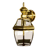 Secure Home 14-1/2-in Polished Brass Motion Activated Outdoor Wall Light