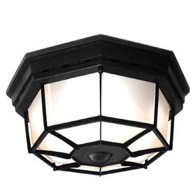 lighting ceiling fans outdoor lighting outdoor flush mount lights. Black Bedroom Furniture Sets. Home Design Ideas