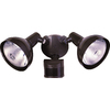 Secure Home 240-Degree 2-Head Dual Detection Zone Halogen Motion-Activated Flood Light with Timer