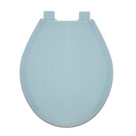 Shop AquaSource Blue Plastic Round Slow Close Toilet Seat At