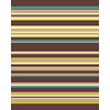 Balta Flash 3-ft 11-in x 5-ft 3-in Rectangular Multicolor Transitional Area Rug