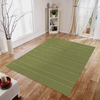 allen + roth Chilham Green Green Rectangular Indoor/Outdoor Woven Area Rug (Common: 5 x 8; Actual: 63-in W x 88-in L)
