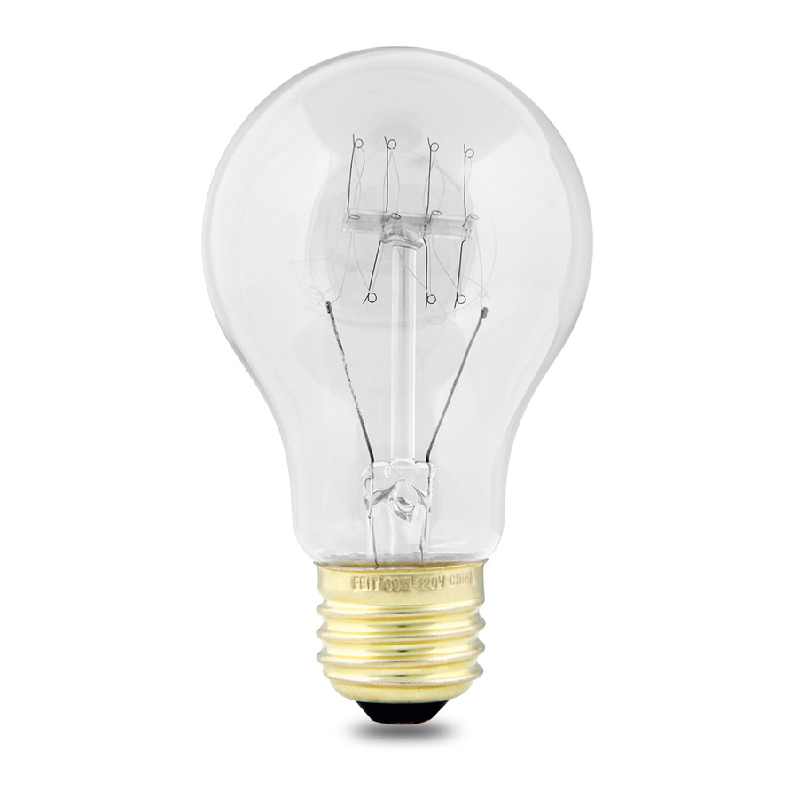 Shop Feit Electric 60 Watt A19 Medium Base Clear Incandescent String Light Bulb At
