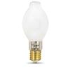 Utilitech 2-Pack 175-Watt BT Mogul Base (E-40) Bright White Halogen Work Light Bulbs