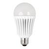 Utilitech 16-Watt (100W Equivalent) 3000K A19 Medium Base (E-26) Warm White Indoor LED Bulb