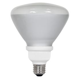 Utilitech 18-Watt (75W) BR40 Medium Base Daylight (5000K) CFL Bulb