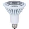Utilitech 15-Watt PAR38 Medium Base Daylight Indoor LED Flood Light Bulb