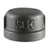 LDR 3/4-in dia Black Iron Cap Fitting