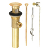 Danze Universal Fit Polished Brass Pop-Up Drain Kit