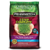 Pennington 1 Step Complete 6.25-lb Dense Shade Grass Seed Mixture