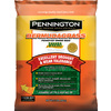 Pennington 2 lbs Sun Grass Seed Mixture
