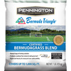 Pennington Pennington 1 lb Sun Grass Seed