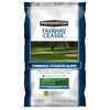 Pennington Fairway Classic 40-lb Perennial Ryegrass Seed